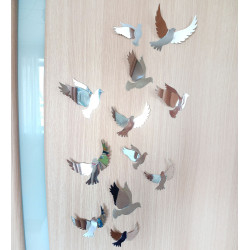Pigeons volumetric stickers